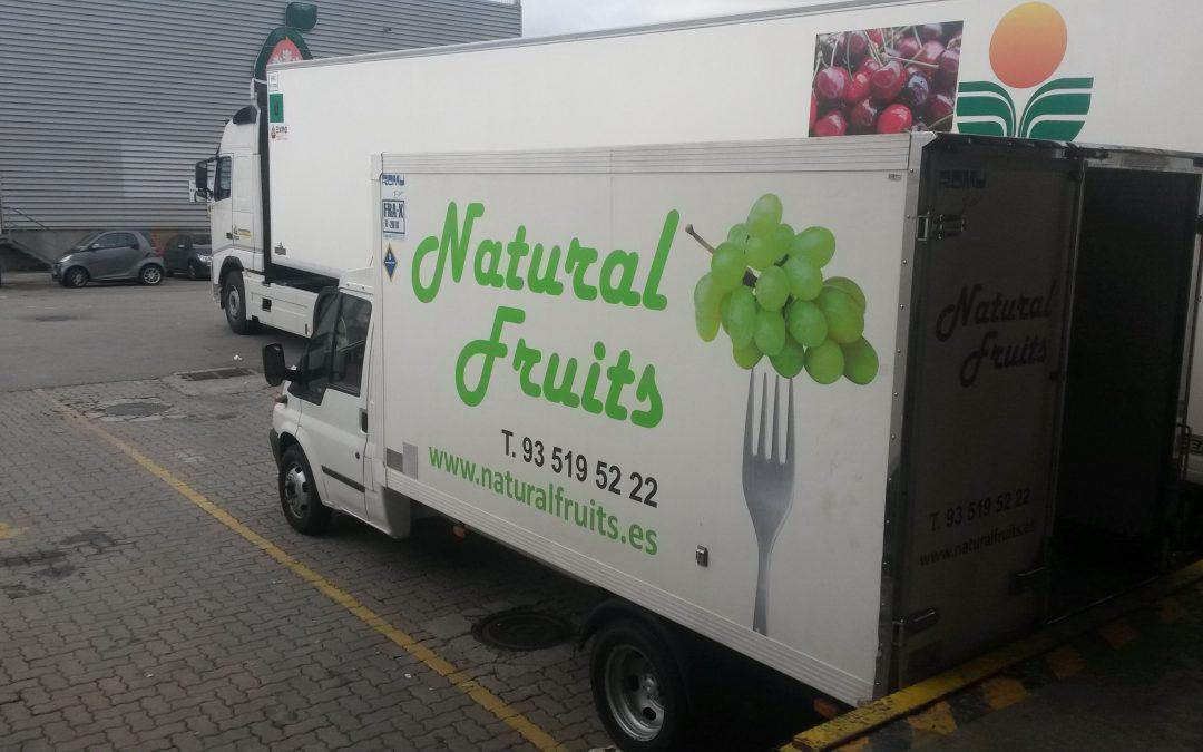 Soluciones Logísticas en el suministro de Fruta y Verdura